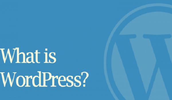 Bật Mí Tuyệt Chiêu Tối ưu Hóa Thiết Kế Web Wordpress Kiến Thức Kinh Doanh